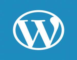 Một số Plugin không thể thiếu trong Wordpress