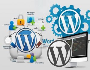 khoa hoc thiet ke web WordPress