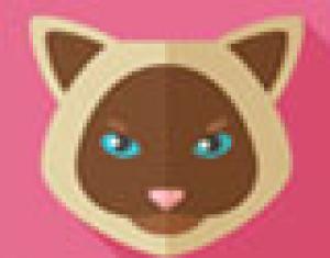 thiết kế mặt mèo bằng adobe illustrator